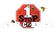 1 Stop Pest Control | Extreminators Ants Rodents, Wasps, Bees, Yellow Jackets Bed Bugs Mice Albany Capital Region
